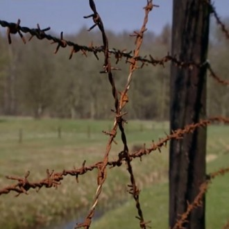 Barbed wire around the Westerbork transit camp in episode 8 of 13 in de oorlog (13 at War; © NTR).